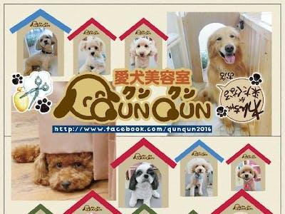 株式会社 Nice QunQunの画像・写真