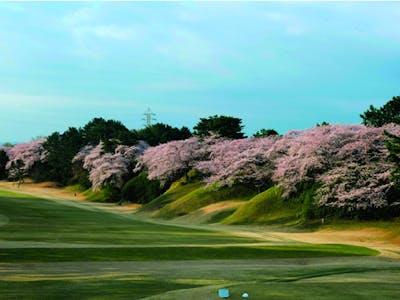 神奈川開発観光株式会社の画像・写真