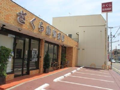 VCA Japan 株式会社の画像・写真